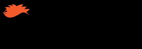 Ranga Surf